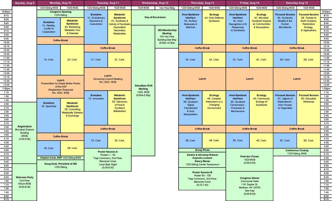 life schedule template